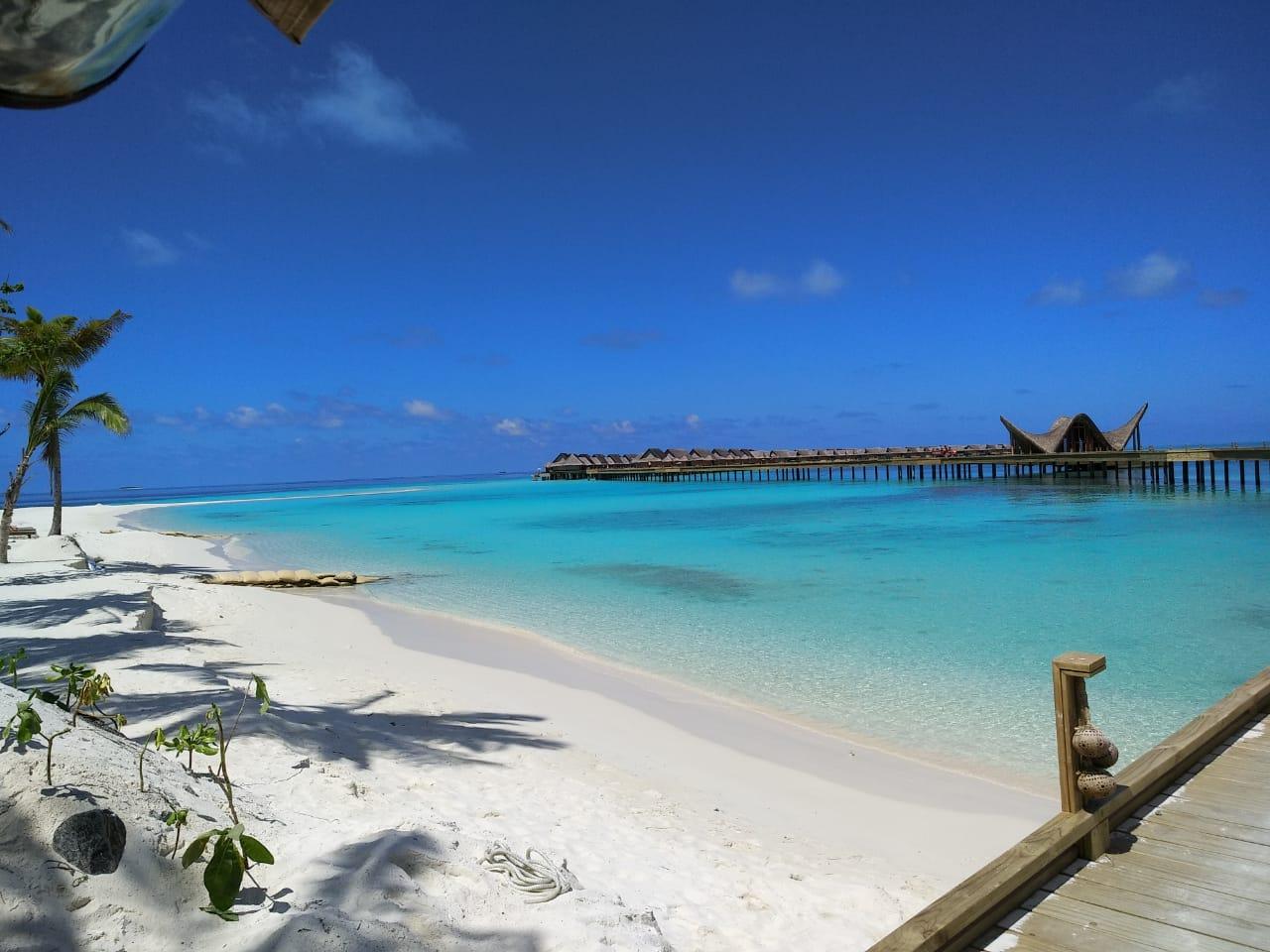 Новогодние туры на Мальдивы!
