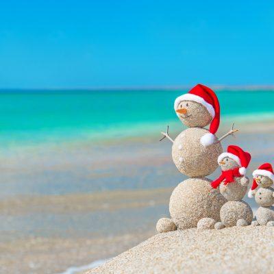 decoration-christmas-new-year-rozhdestvo-holiday-celebrati-6
